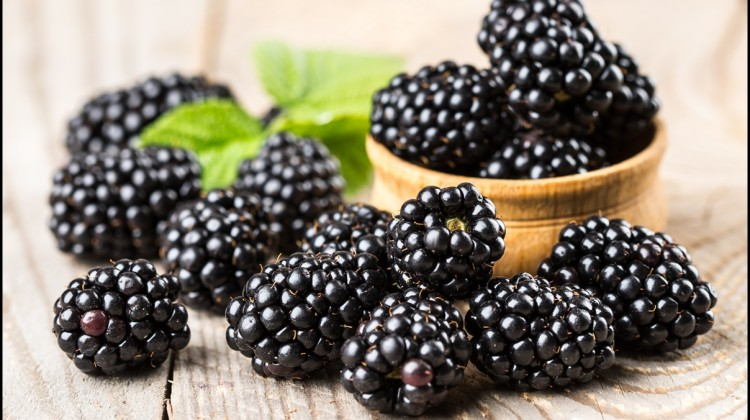 8 Amazing Health Benefits of Blackberries – Reasons Why Blackberries Are Extremely Good For You And Your Health