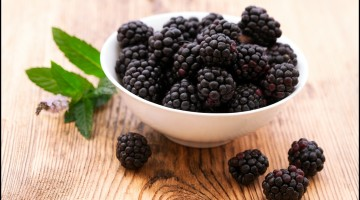 Fun Facts of Blackberries