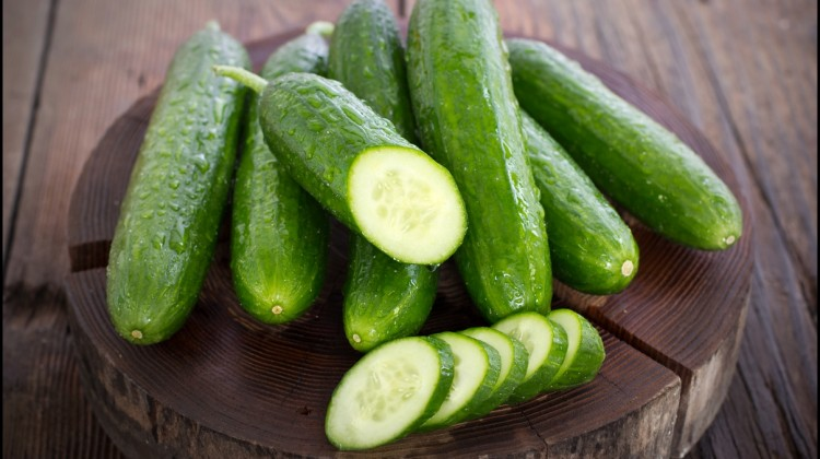 Fun Facts of Cucumbers