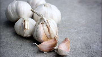 Fun Facts of Garlic