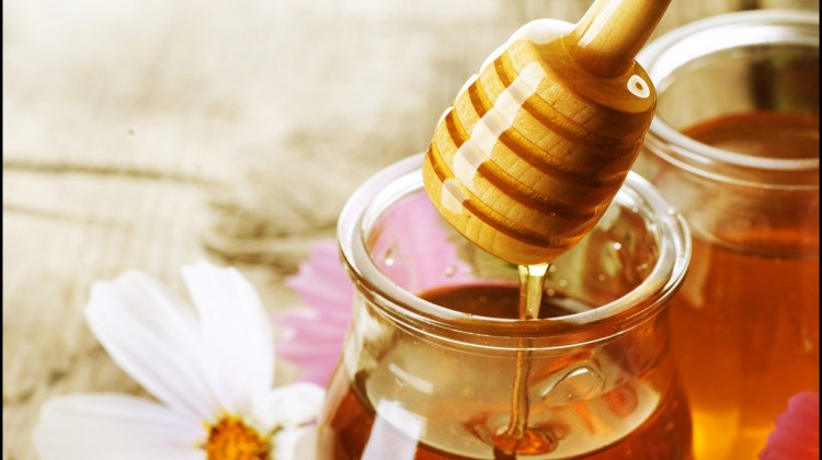 Fun Facts of Honey
