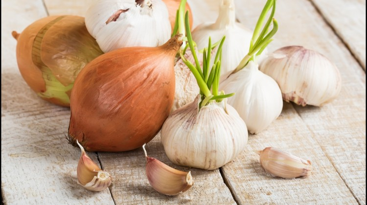 Fun Facts of Onions