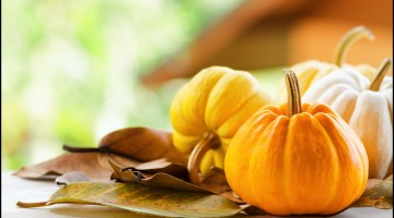Fun Facts of Pumpkin