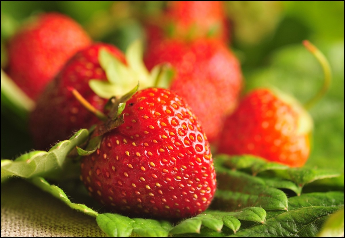 A strawberry a day keeps the doctor away
