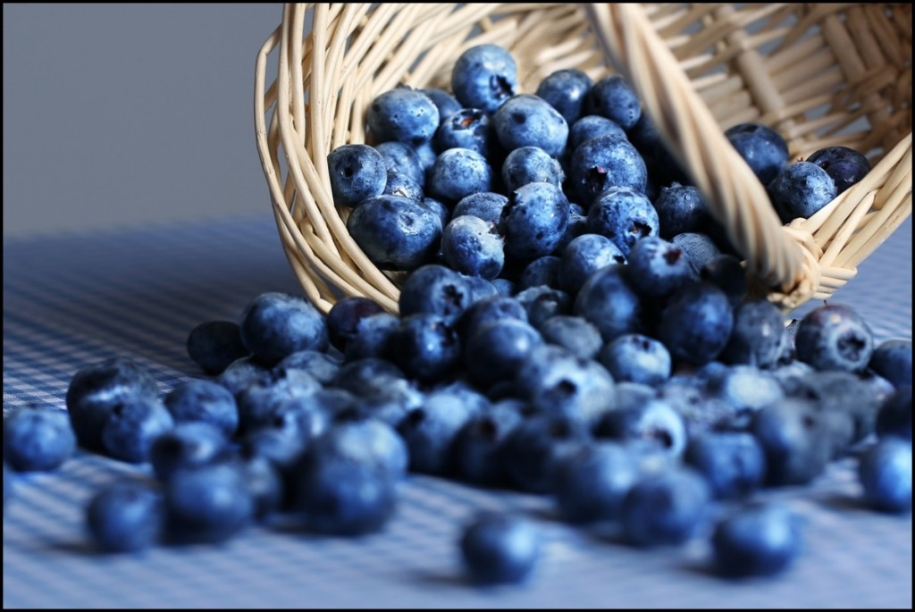 Basket of blueberries spilling onto blue tablecloth