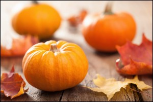 Beautiful autumn halloween pumpkins