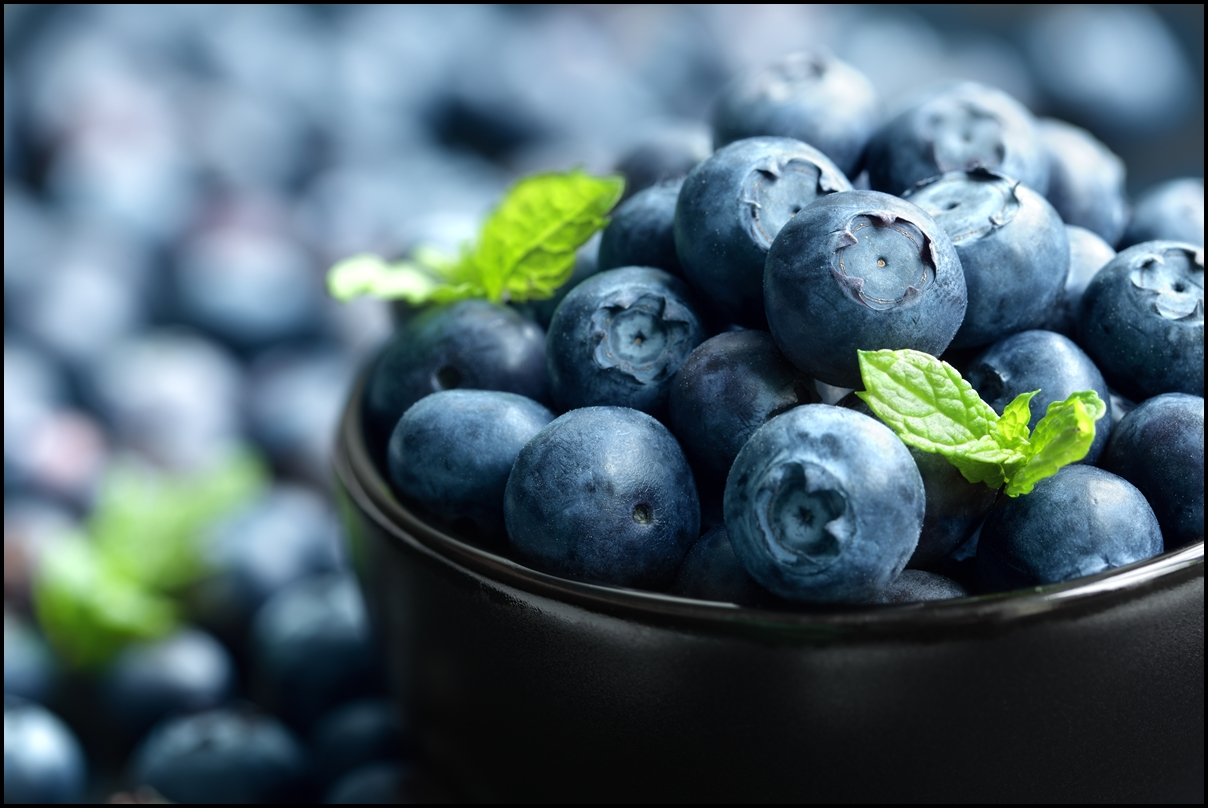 Blueberries: A Healthy Food