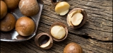 Amazing Health Benefits of Macadamia Nuts – Are Macadamia Nuts Really That Healthy?