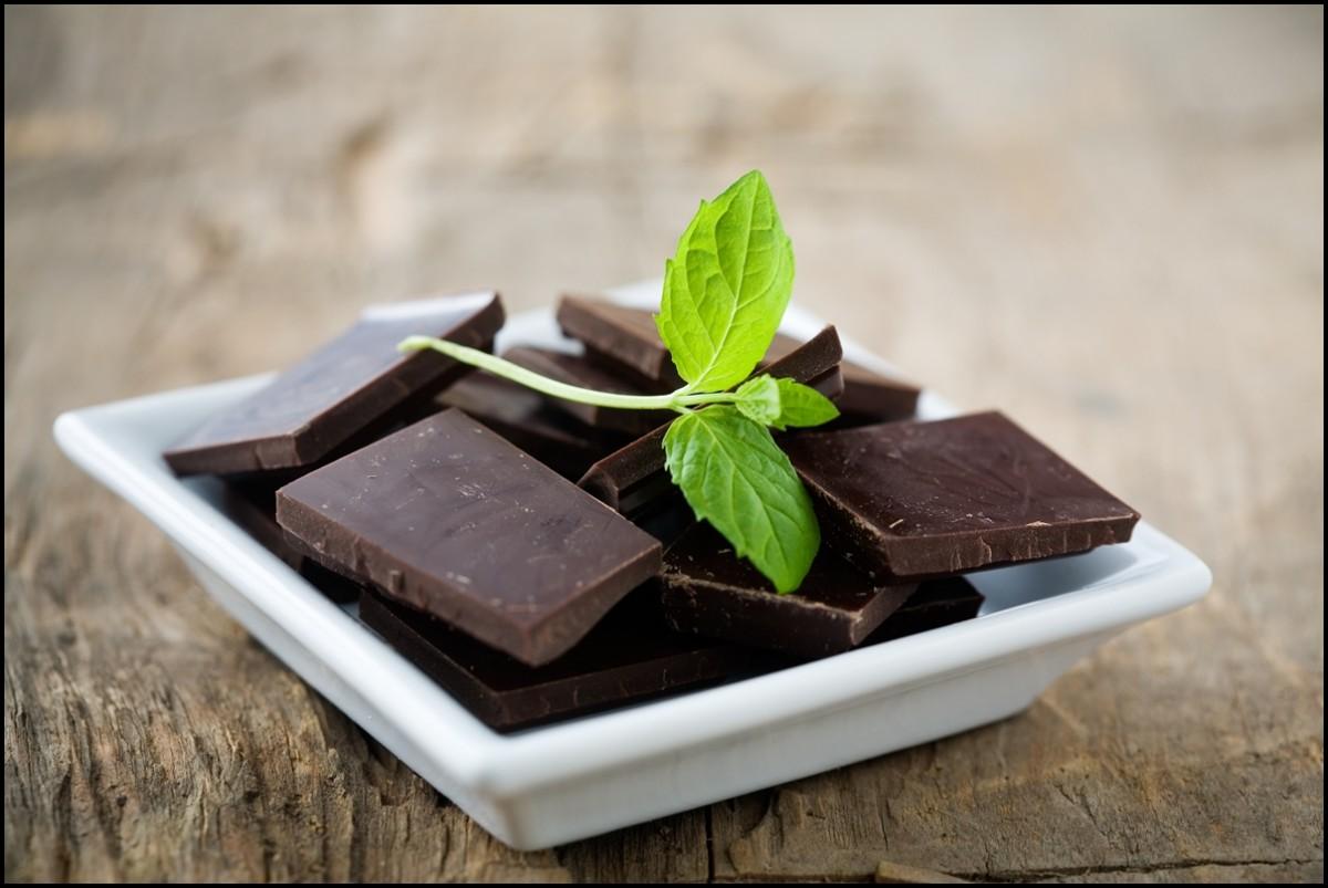 Dark chocolate blocks with a fresh mint leaf