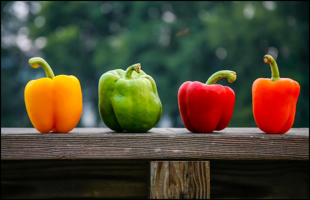 Four different colored bell peppers. Yellow, Green, Red, Orange