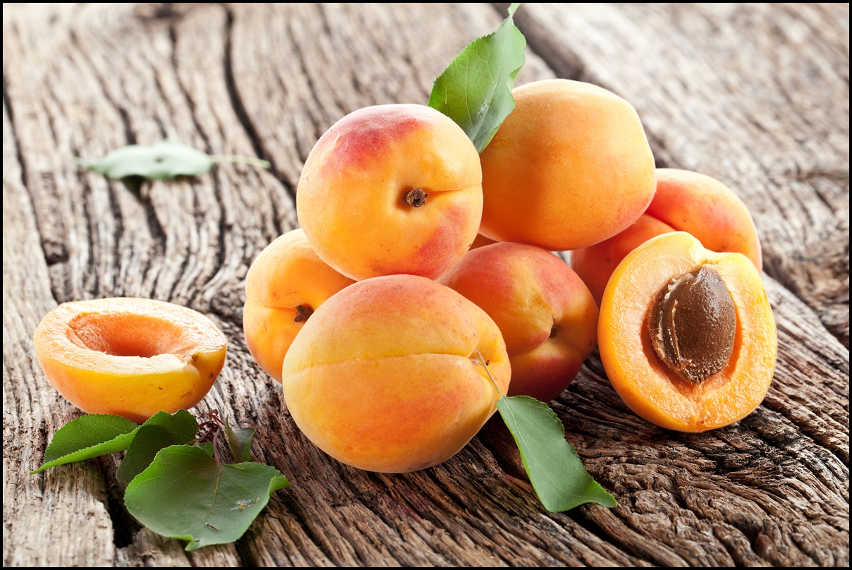 Fresh Apricots with leaves
