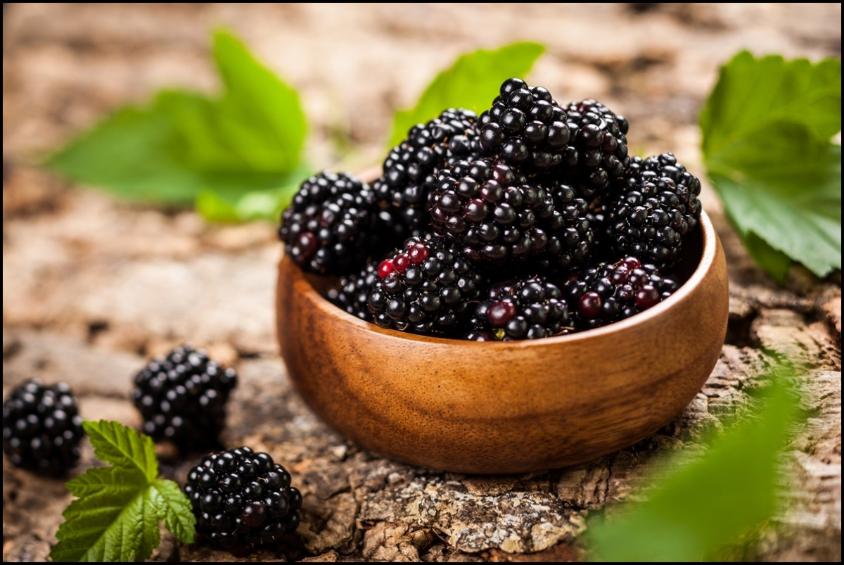 Fresh and Organic Blackberries in a wooden bowl