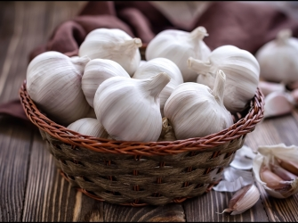 8 Important Health Benefits of Garlic – Reasons Why You Should Add Garlic Into Your Daily Diet