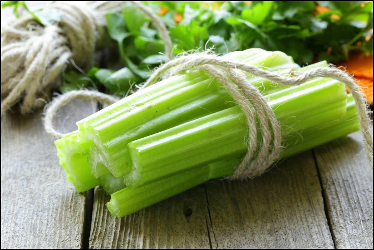 Fresh celery sticks close up
