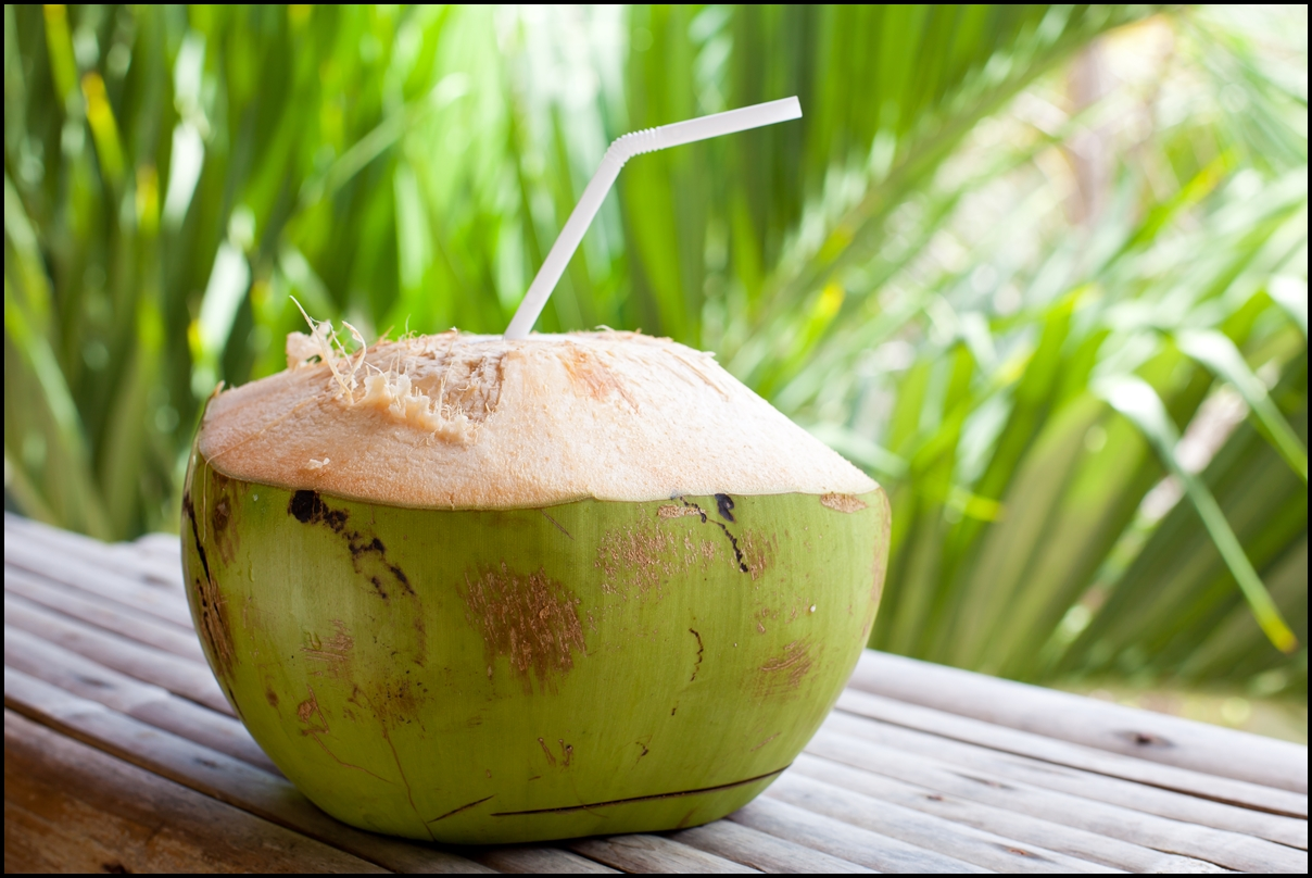 Fresh green coconut on palm tree background