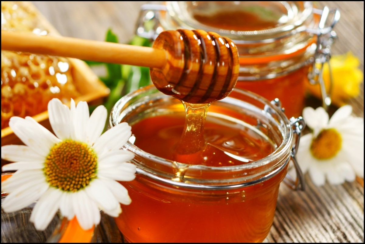 Fresh honey close up