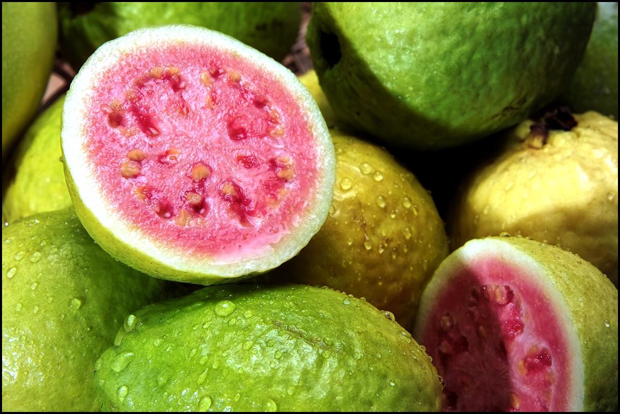 Fresh pink brazalian Guavas
