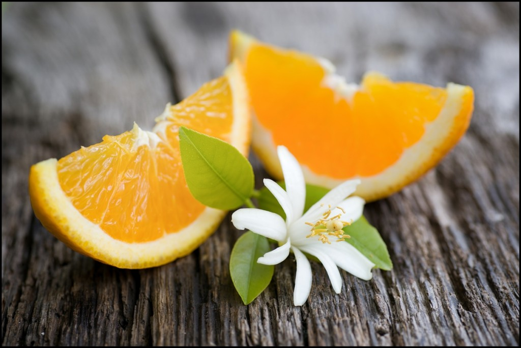 Fresh sliced oranges and blossom