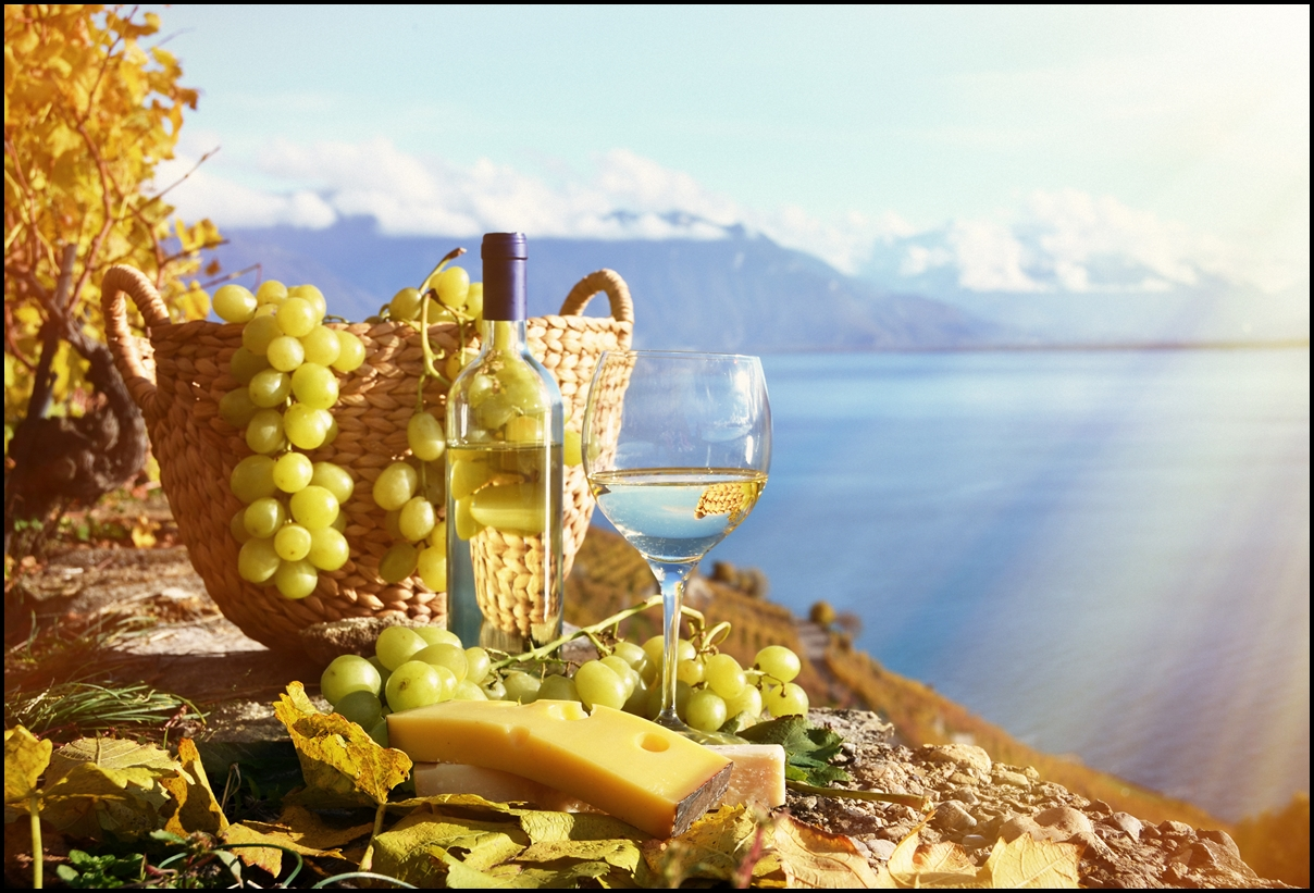 Green grapes and white wine. Lavaux region, Switzerland