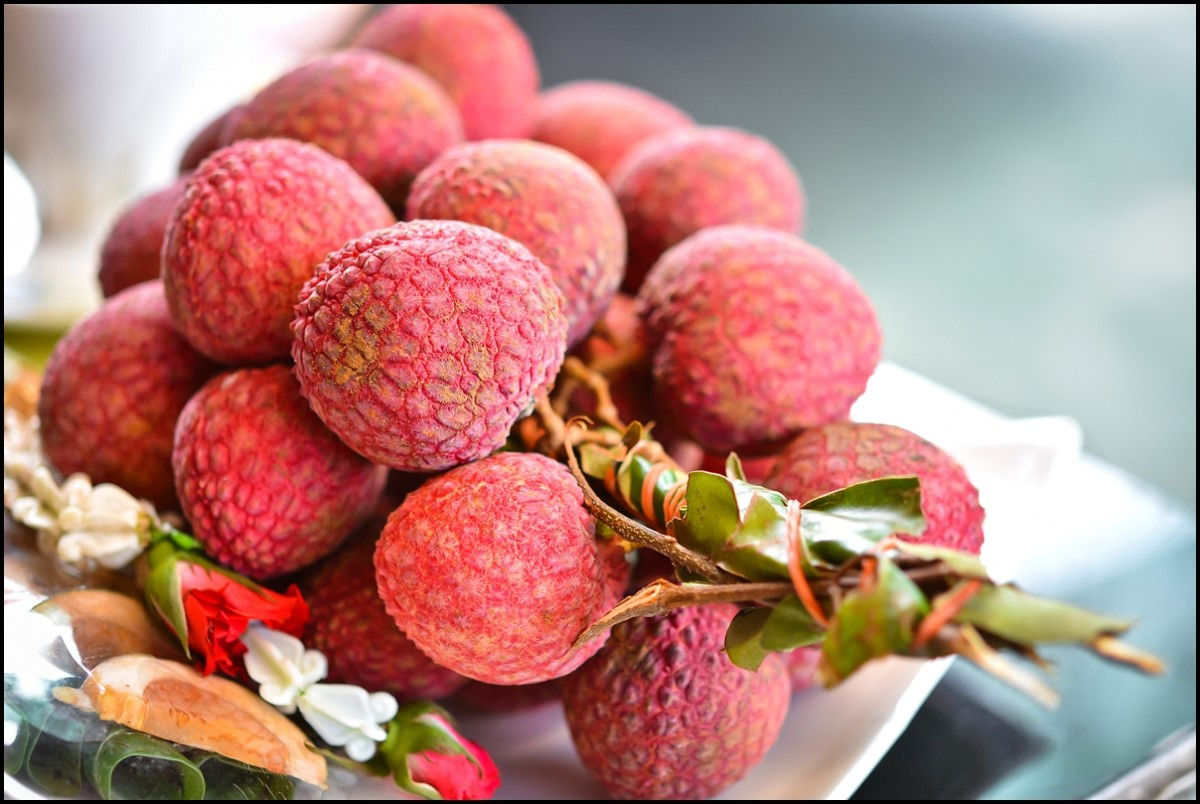 Lychee: a fruit that gives joy to life 17