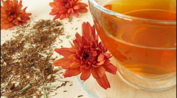 Delicious Health Benefits of Rooibos Tea – 10 Reasons Why Rooibos Tea is Extremely Good For You