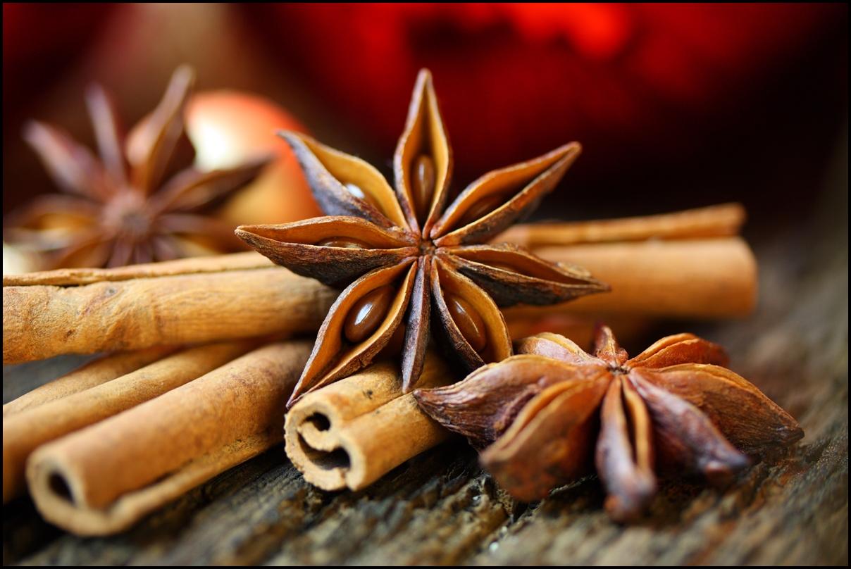 Star anise with cinnamon