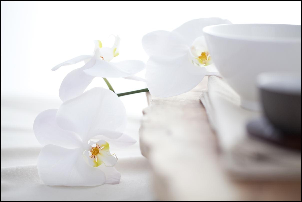 White flowers and white tea