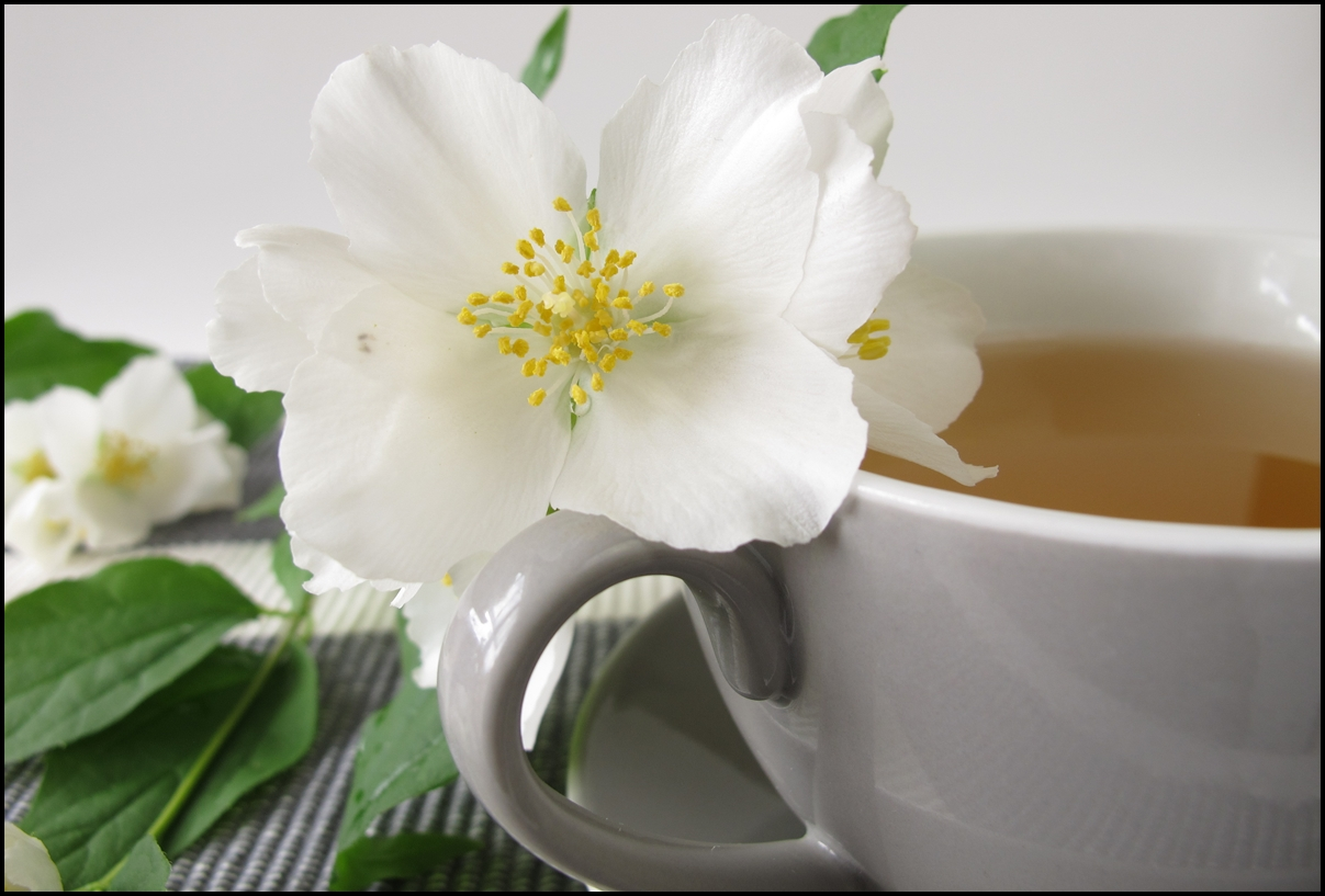 White tea and summer jasmine