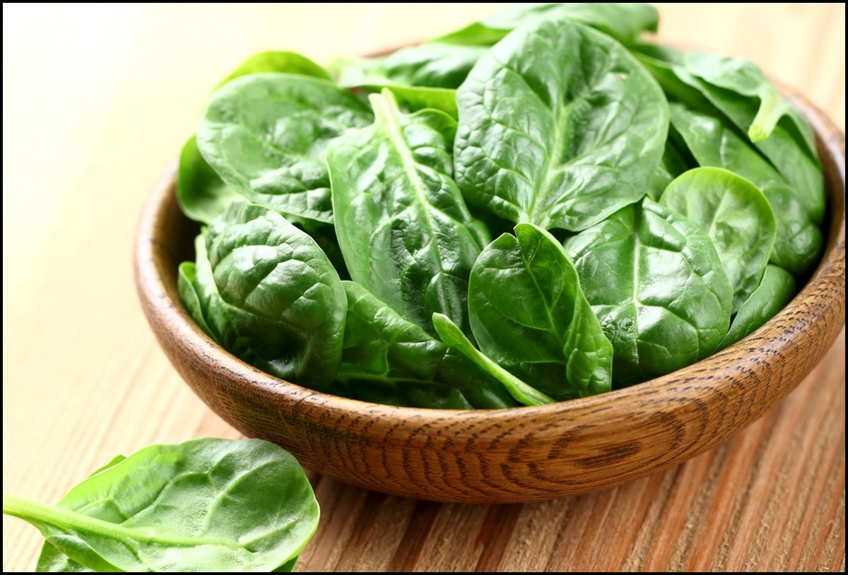 Young spinach in a wooden plate - Eat Spinach for a healthier life