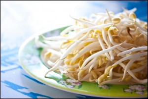 bowl of Bean Sprouts