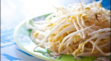 10 Reasons Why You Should Eat More Bean Sprouts – What Are The Health Benefits of Bean Sprouts?