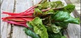 8 Amazing Health Benefits of Swiss Chard – Reasons Why Swiss Chard Is Good For You