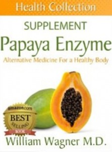 The Papaya Enzyme Supplement - Alternative Medicine for a Healthy Body