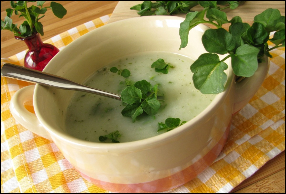 Yummy and Delicious Watercress Soup
