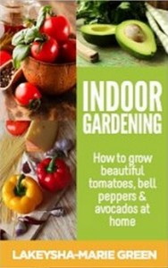 Indoor gardening - How to grow beautiful tomatoes, bell peppers & avocados at home