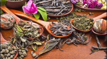 Collection of different dry types tea - Types of teas and their important health benefits