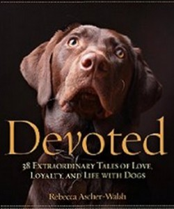 Devoted - 38 Extraordinary Tales of Love, Loyalty, and Life With Dogs