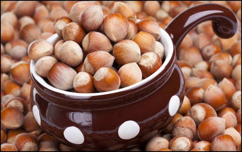 Different types of nuts - Hazelnuts