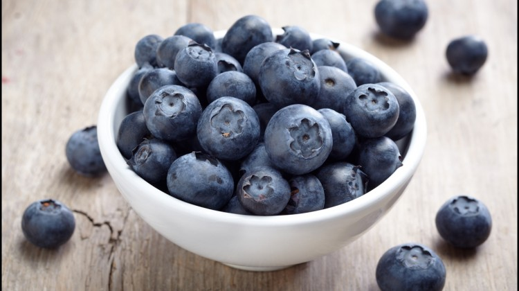 Fun Facts of Blueberries