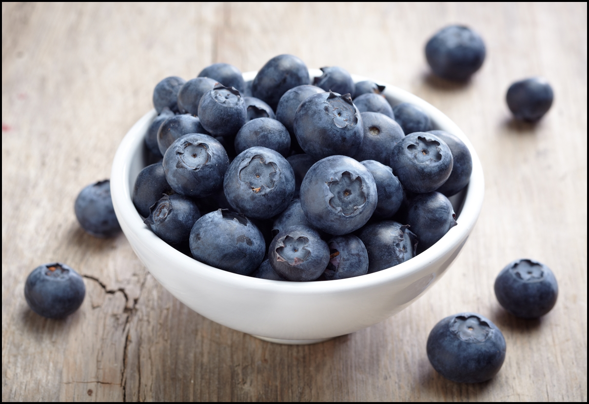 Fun Facts of Blueberries - Serving Joy - Inspire Through ...