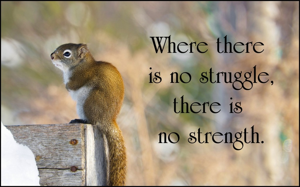 When There Is No Struggle There Is No Strength