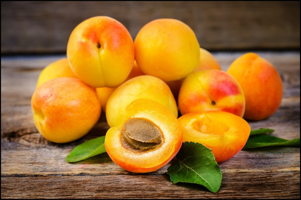 Fun Facts of Apricots