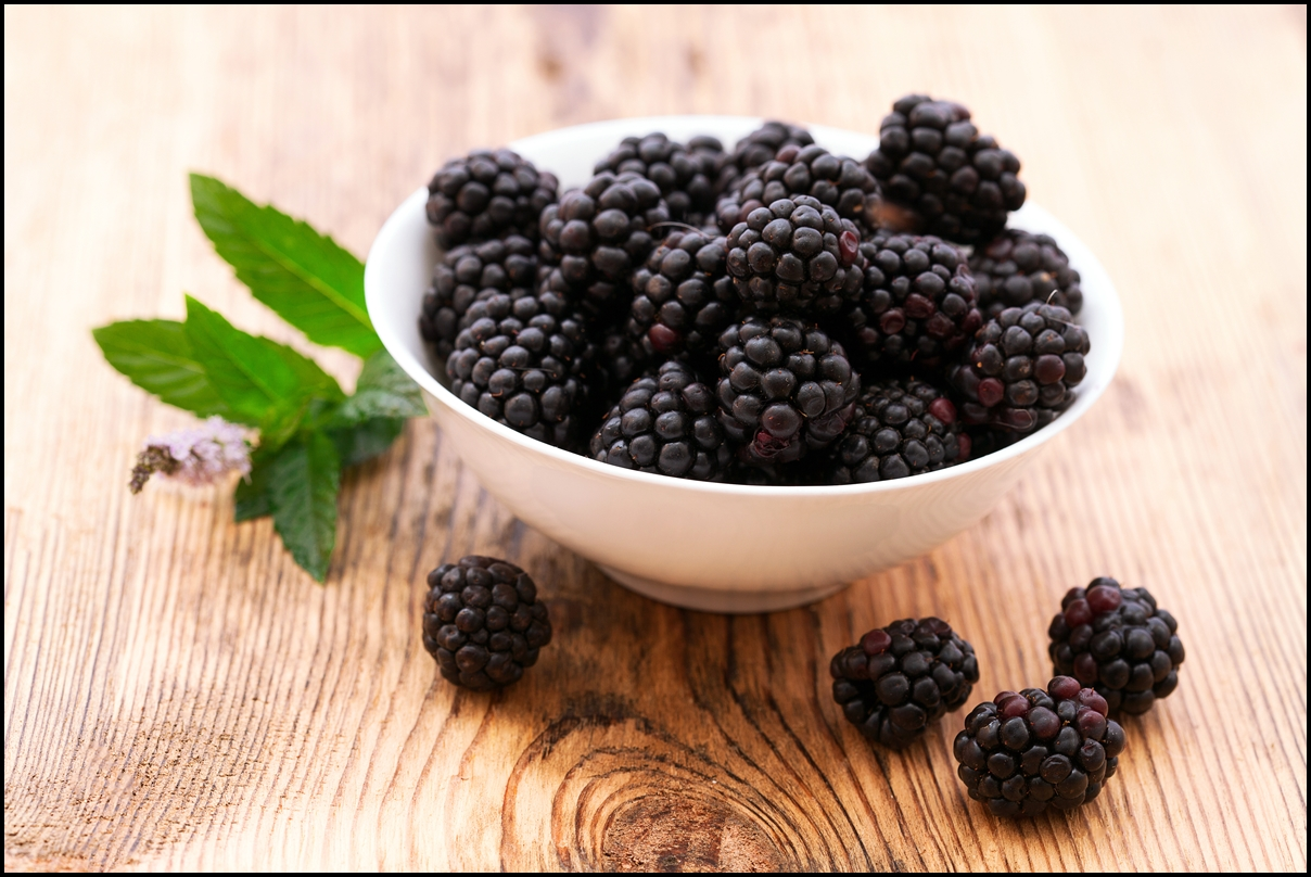 black berries Learn about the benefits of blackberry nutrition fresh blackberries were recently identified as a top cancer fighter.