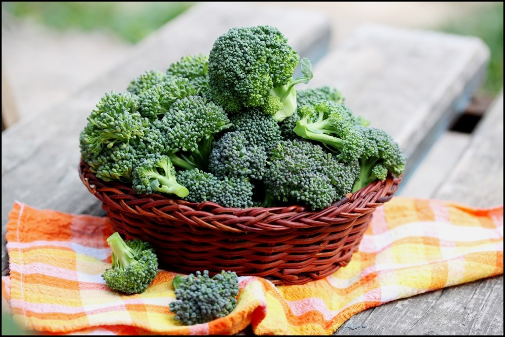 Fun Facts of Broccoli 2