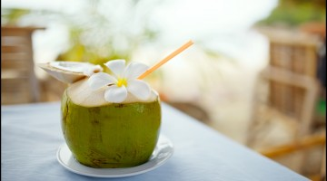 Fun Facts of Coconut