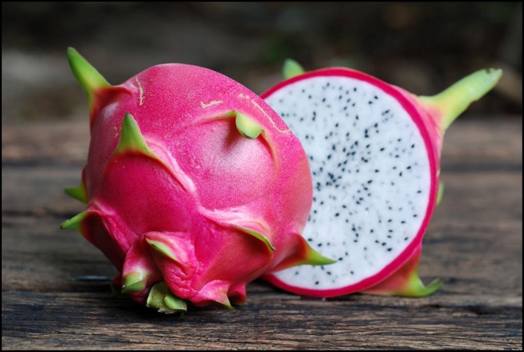 Fun Facts of Dragon Fruit 2