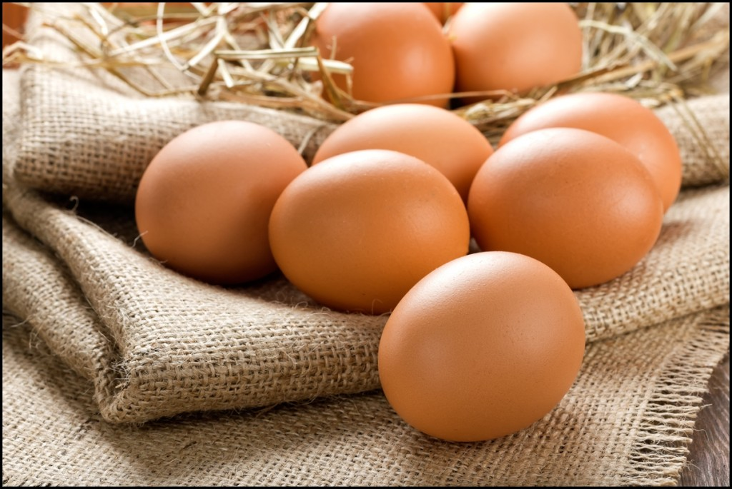 Fun Facts of Eggs