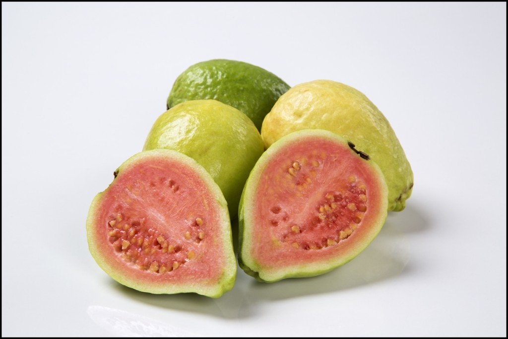 Fun Facts of Guavas 2