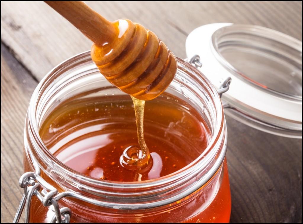 Fun Facts of Honey 2