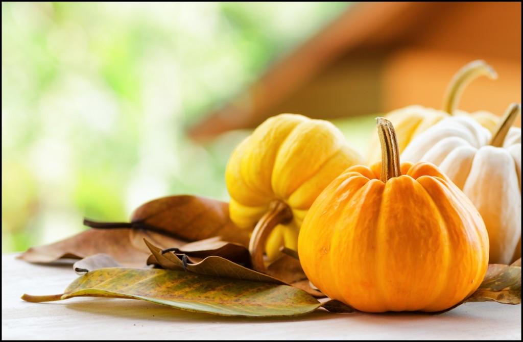 Fun Facts of Pumpkin